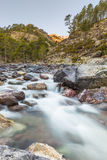 Rivière fluide d'Asco en Corse image stock