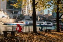 Rivière fonctionnant par la boucle du centre de Chicago Images stock