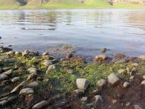 Rivière Inde de Narmada images stock