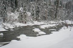 Rivière Iogach de montagne Images libres de droits