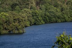 Rivière Kali - comme vu dans Ganeshgudi photo stock