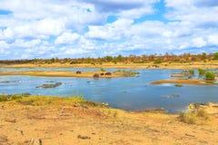 Rivière Kruger d'Olifants photo libre de droits