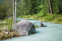 Rivière Kucherla Photos stock