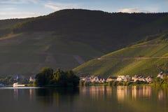 Rivière la Moselle et collines avec des raisins Photographie stock