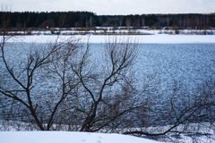 Rivière large dans la forêt d'hiver image libre de droits