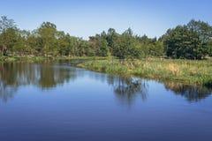 Rivière Liwiec en Pologne Photographie stock libre de droits