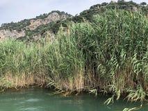 Rivière mai 218 de Dalian Photo stock