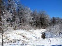 Rivière minuscule par les bois couverts de la glace photo libre de droits