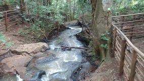 Rivière montrant l'écoulement de l'eau sous le pont banque de vidéos