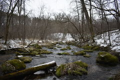 Rivière moussue Photos libres de droits