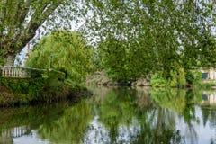 Rivière Nabao flottant par Tomar, Portugal Jardin photographie stock libre de droits