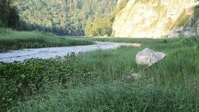 Rivière Nugush et montagnes dans Bashkortostan Russie banque de vidéos