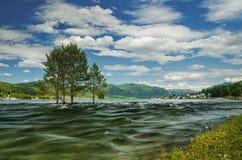 Rivière orageuse de ressort, qui a l'arbre en crue contre le contexte des montagnes et du village Images stock
