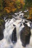 Rivière par des couleurs d'automne à l'ermitage, Ecosse images stock