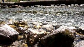 Rivière par des roches banque de vidéos