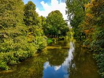 Rivière par le milieu de la forêt photos stock