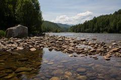 Rivière peu profonde dans la forêt sauvage Photos stock