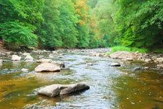 Rivière peu profonde rapide traversant une vallée verte photo libre de droits
