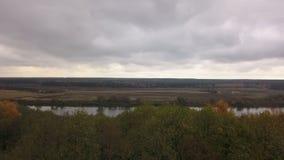 Rivière pour la forêt d'automne banque de vidéos