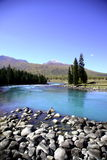 Rivière près de forêt Photos libres de droits
