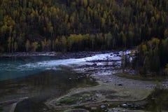 Rivière près de forêt Photographie stock libre de droits