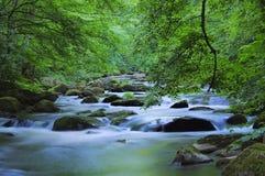 Rivière présagée Photos libres de droits