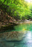 Rivière profondément en montagne à l'été image stock