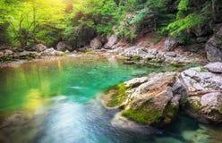 Rivière profondément en montagne à l'été photo libre de droits