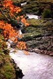 Rivière profonde de Klickitat photo libre de droits