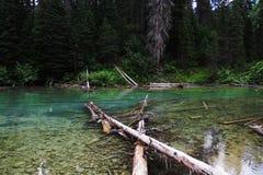 Rivière propre naturelle Images libres de droits