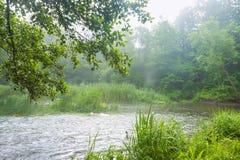 Rivière propre peu profonde en été, rivière peu profonde d'hurlement photographie stock