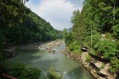 Rivière Prut Photos libres de droits