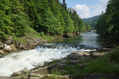 Rivière Prut image libre de droits