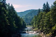 Rivière Prut Photographie stock