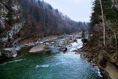 Rivière Prut de Carpathiens images stock