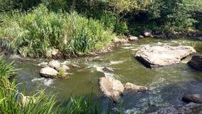 Rivière qui coule entre les roches et l'herbe Photographie stock