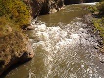 Rivière rapide Photo libre de droits
