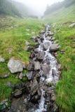 Rivière rapide de montagne coulant parmi les pierres moussues photographie stock