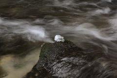 Rivière rapide de montagne d'hiver photographie stock