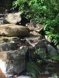 Rivière rocheuse Photographie stock