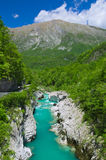 Rivière sauvage dans les Alpes (Soca/Isonzo) Photos stock
