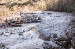 Rivière sauvage et scénique de Chattooga Images libres de droits