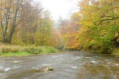 Rivière Schwechat Photographie stock libre de droits