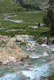 Rivière serpentant par le pré alpin Photo stock