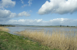 Rivière Severn chez Framilode supérieur images stock