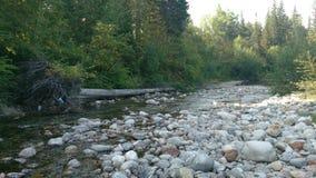Rivière sibérienne Photographie stock