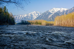 Rivière Snezhnaya dans l'arête Khamar-Daban de montagnes Photos libres de droits