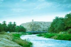Rivière suivant la montagne avec des palmiers Photographie stock