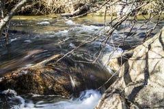 Rivière sur la montagne Images libres de droits