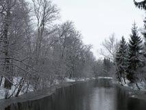 Rivière Sysa et arbres neigeux en hiver, Lithuanie Images stock
